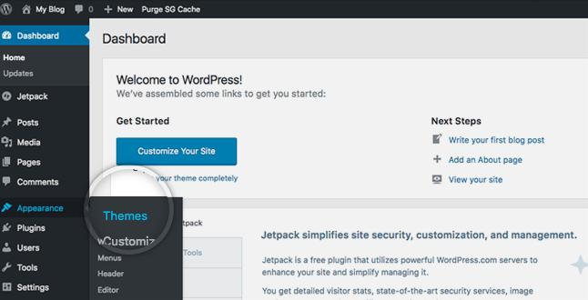 install tema baru di wordpress